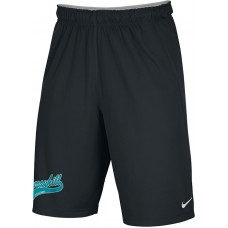 Murrayhill Little League 32: Adult-Size - Nike Team Fly Athletic Shorts - Black